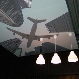 Akoestisch plafondpaneel met print